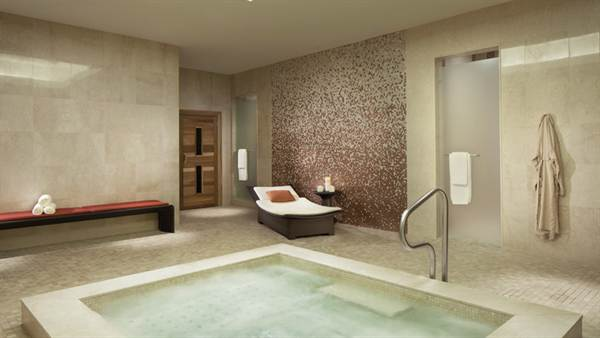 The Residences at the Ritz Carlton photo 20